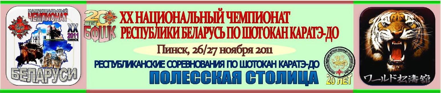 НЧРБ Полесская столица-2011 Баннер