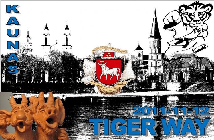 TW-2011 постер
