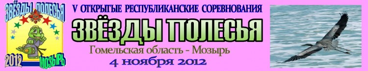 Мозырь 2012 Баннер