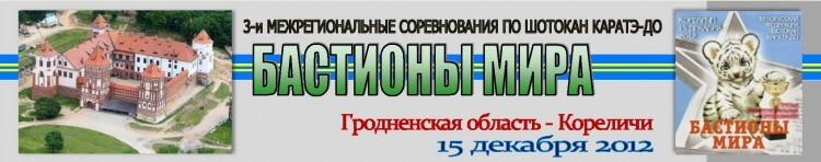 Кореличи 2012 Баннер
