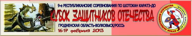 Волковыск-2013 Баннер