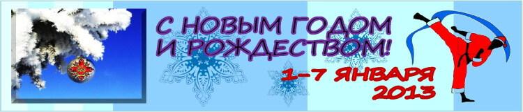Новый год-2013 Баннер