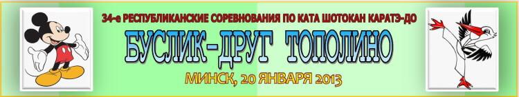 Буслик-друг Тополино 2013 Баннер''