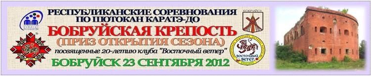 Бобруйск-2012 Баннер
