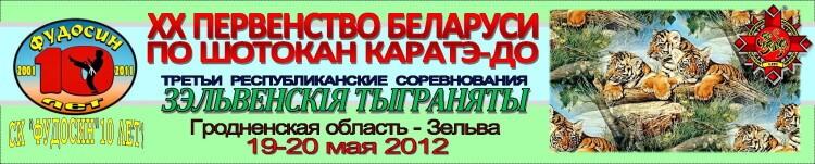 Зельва-2012 Баннер