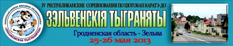 Зельва-2013 Баннер''