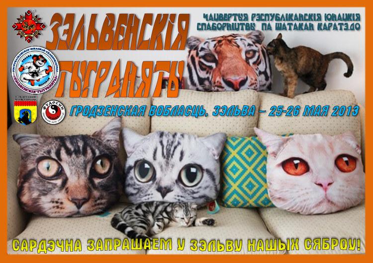 Зельва-2013 Постер