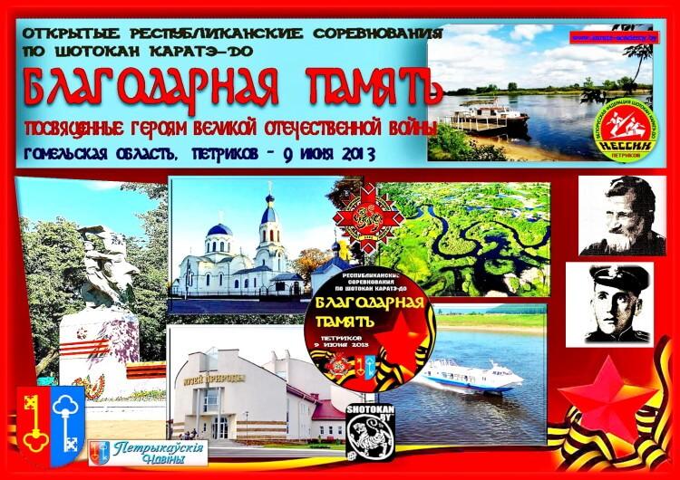 Петриков-2013 Постер