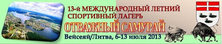 Вейсеяй-2013 Баннер