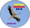 00 Мозырь 2013 Эмблема