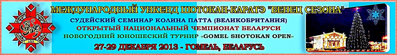 в Гомеле-2013: Биг-баннер