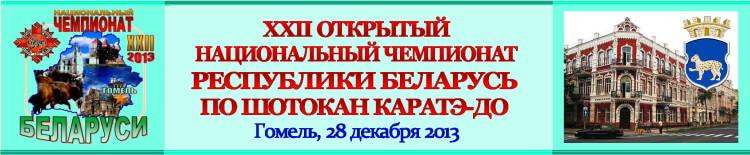НЧРБ-2013 Баннер