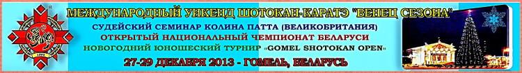 Гомель-2013 Венец сезона Биг-баннер
