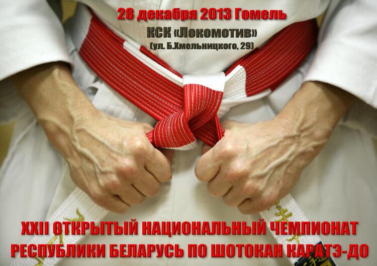 НЧРБ-2013 Постер-1