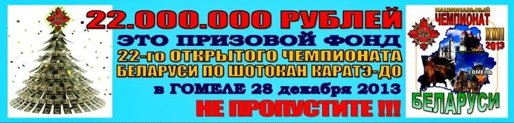 Гомель-2013 Призовой фонд