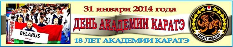 День Академии каратэ-2014 Баннер
