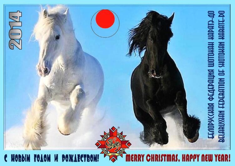 БФШК Новый год-2014 Постер''