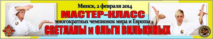 Мастер-класс Вилькиных 02-2014 Баннер