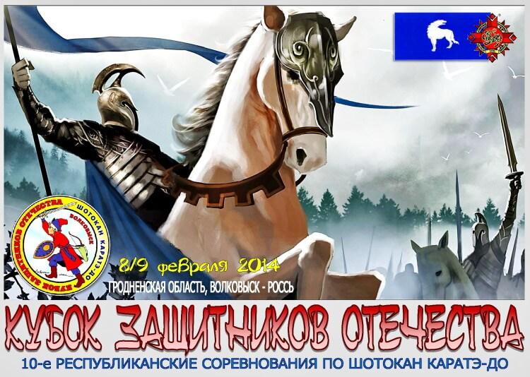 Волковыск-2014 Постер