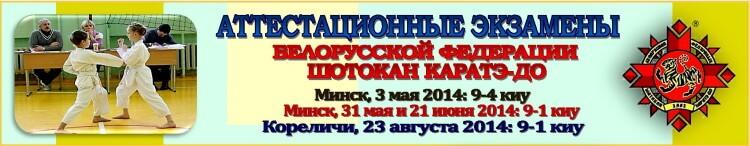 Аттестация БФШК 2014 05-08 Баннер