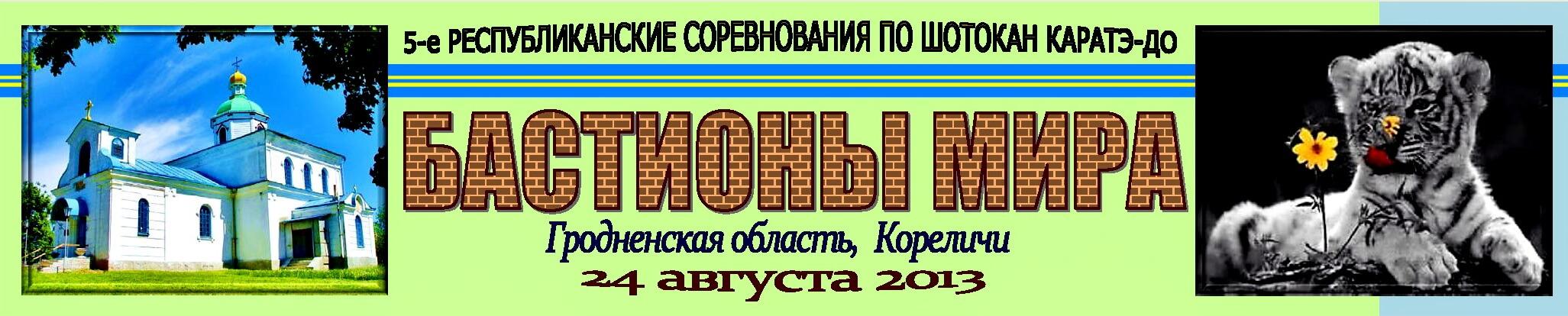 Кореличи-Мир 2014 Баннер