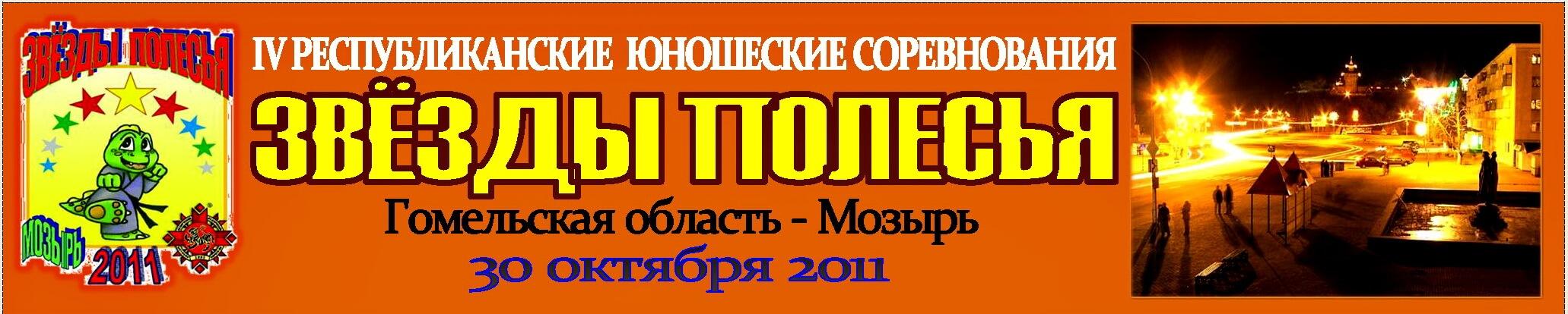 Мозырь-2011 Баннер