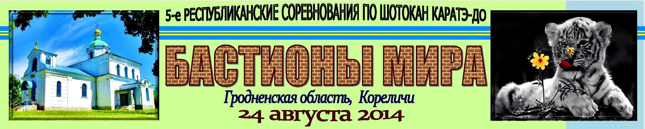 Кореличи-Мир 2014 Баннер''