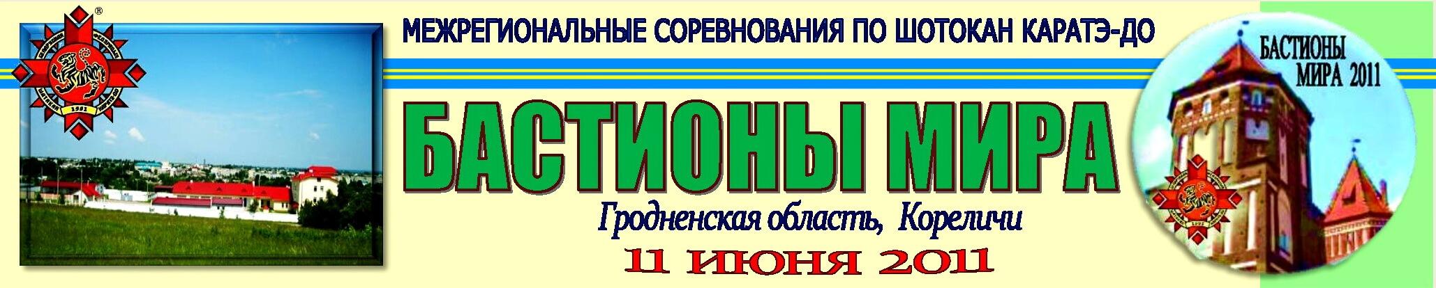 Кореличи-2011 Баннер