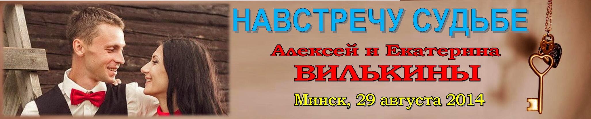 Вилькины Навстречу судьбе-2014 Баннер