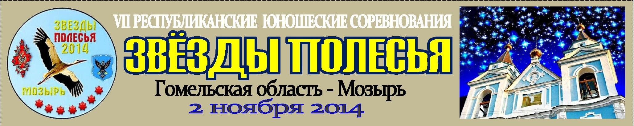 мозырь_2014