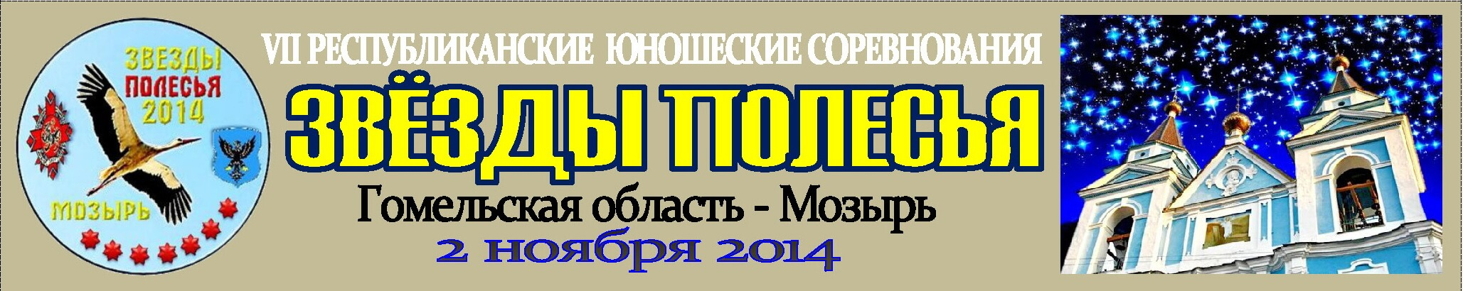 Мозырь-2014 Баннер