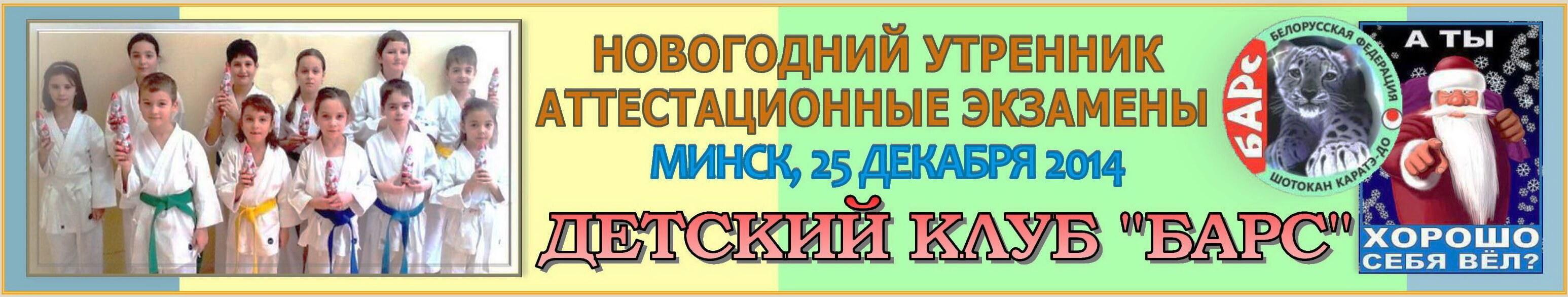 Барс 12-2014 Баннер