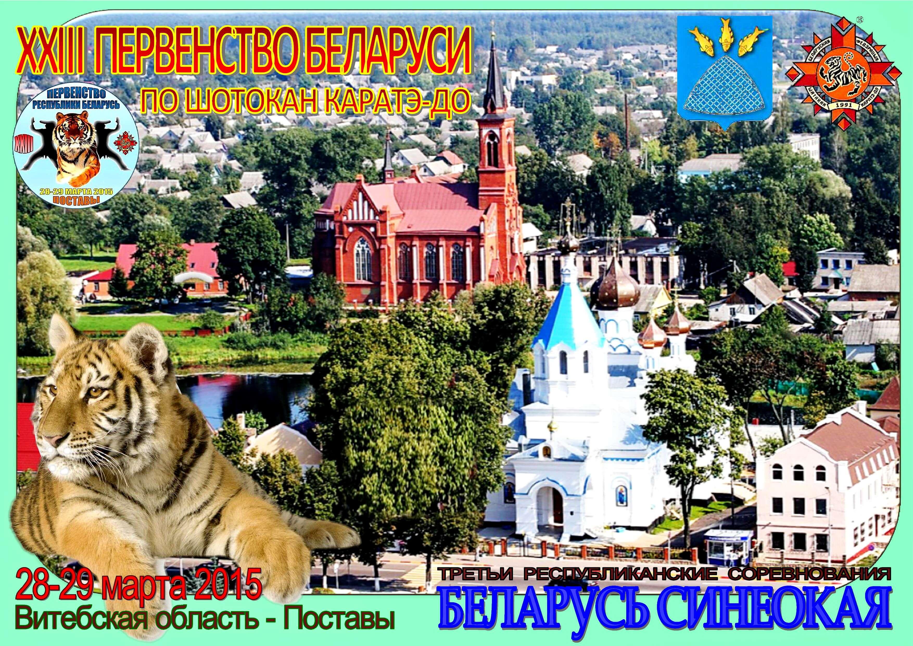 Поставы-2015 Постер