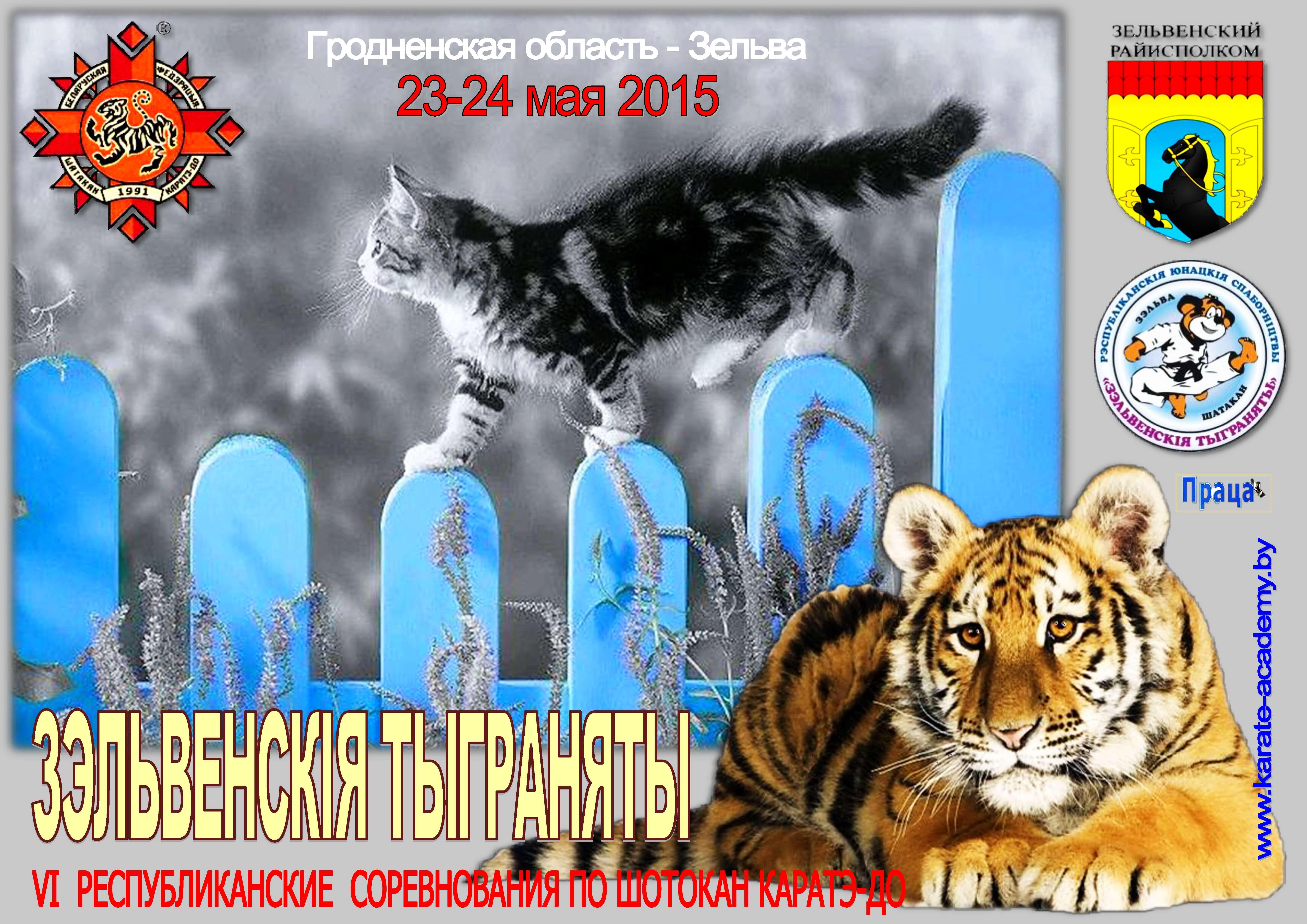 Зельва-2015 Постер