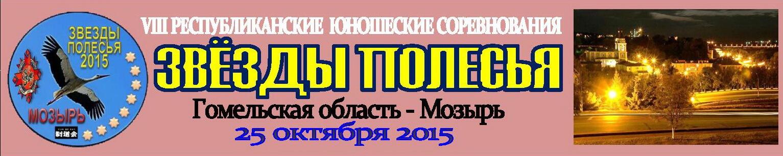 Мозырь-2015 Баннер