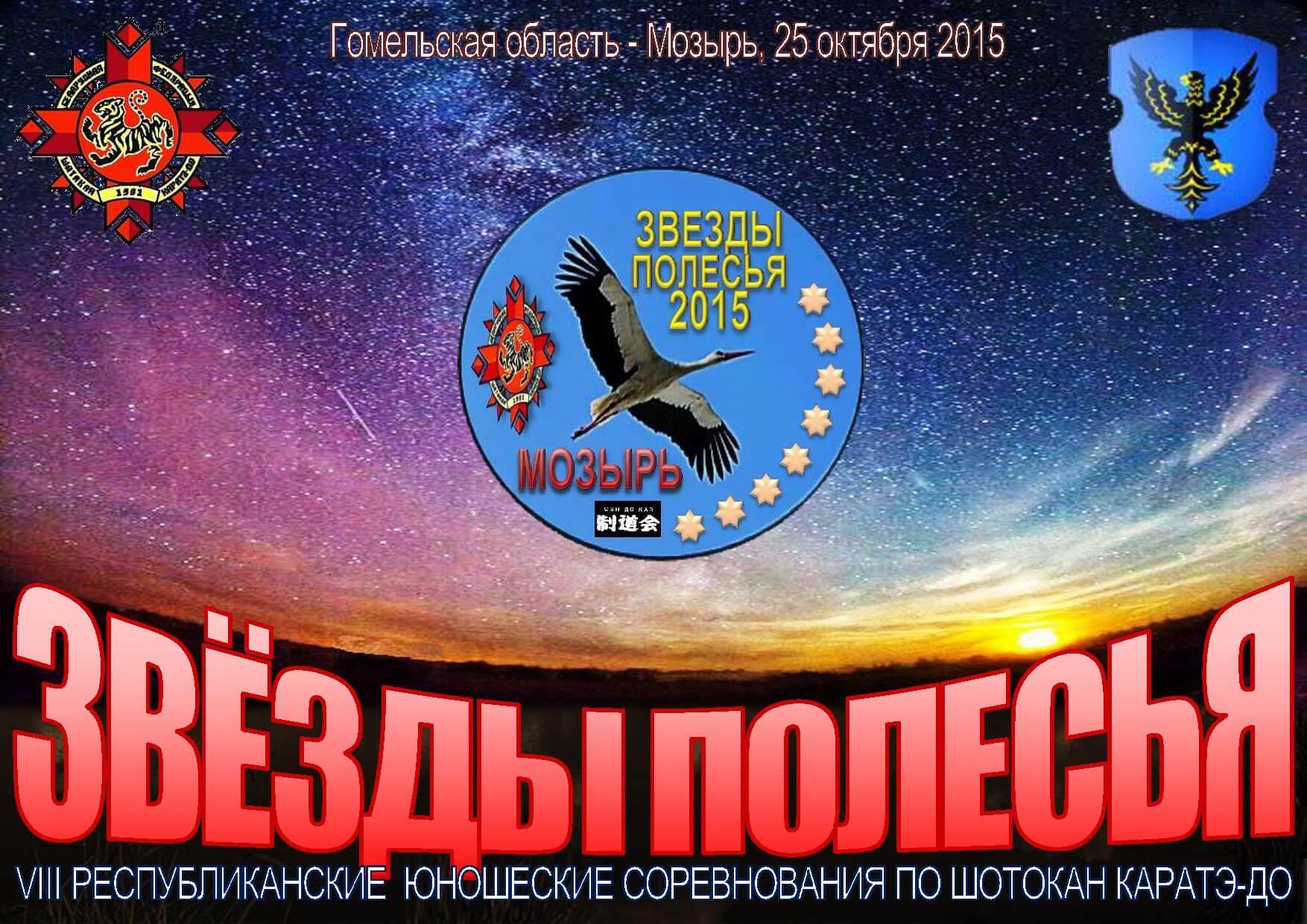 Мозырь-2015 Постер