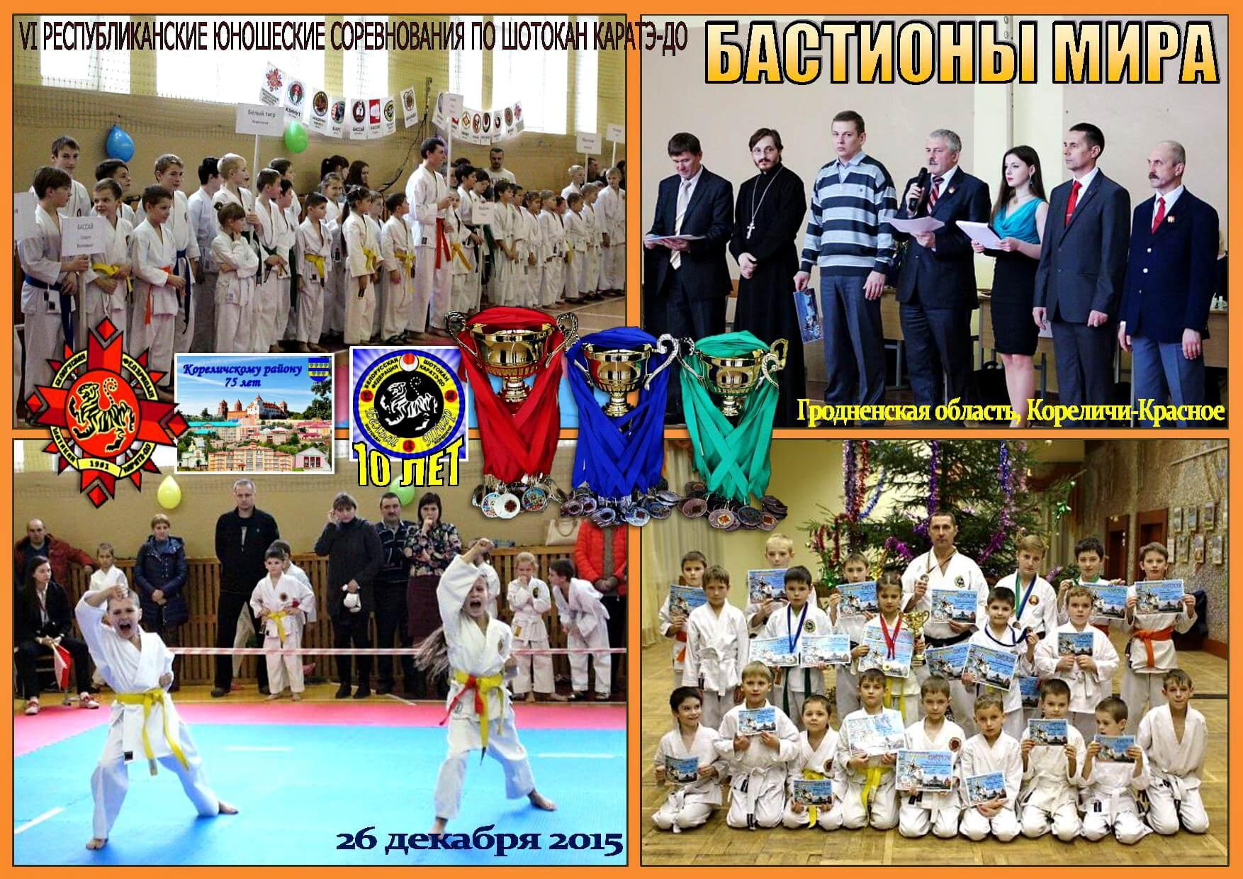 Кореличи-2015 Постер