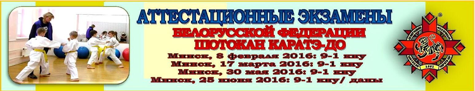 Аттестации БФШК-2016: Баннер