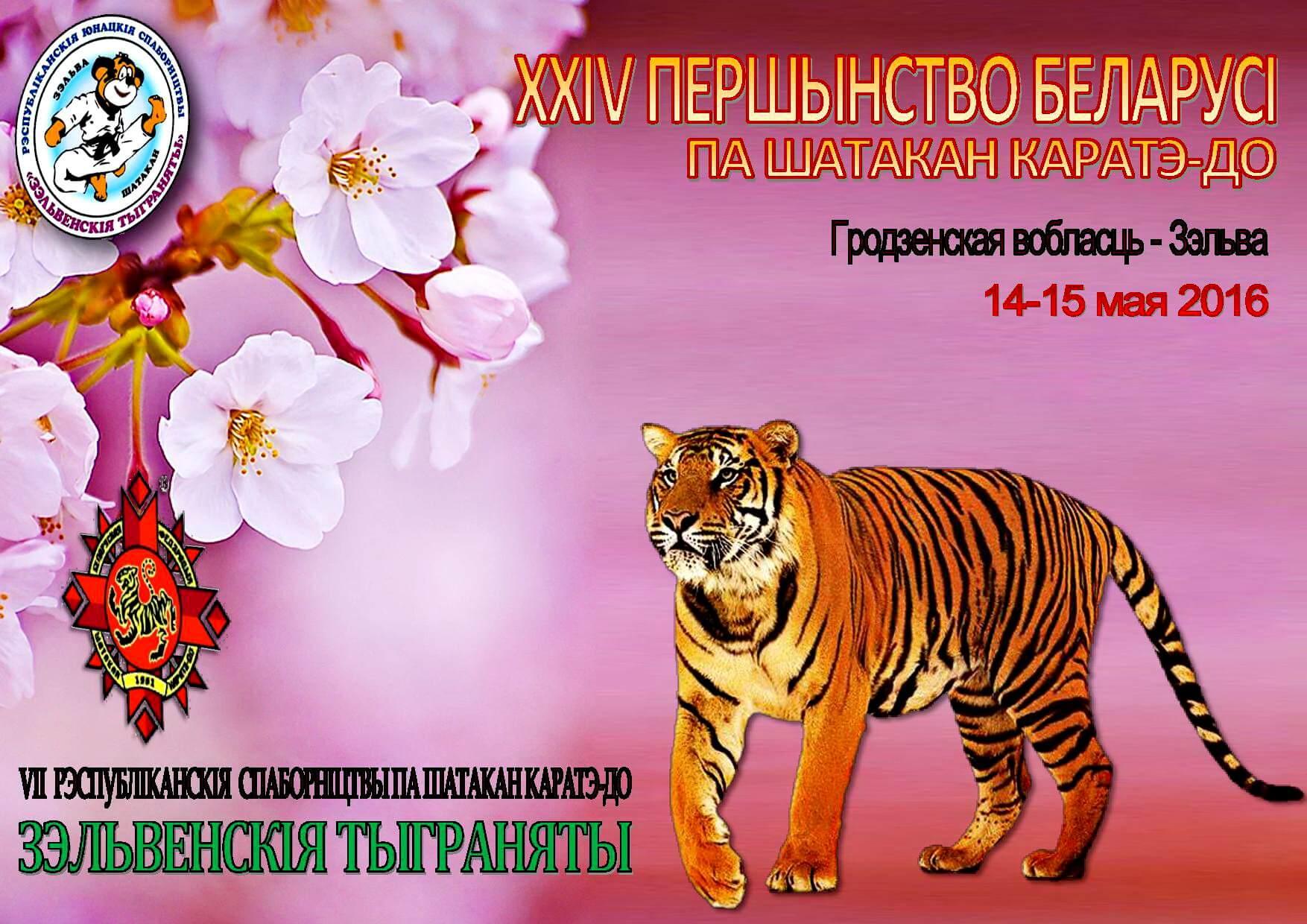 Зельва-2016 Постер 2