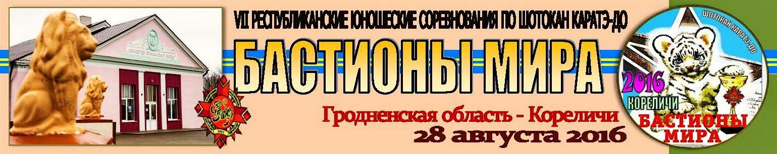 Кореличи-Мир 2016 Баннер