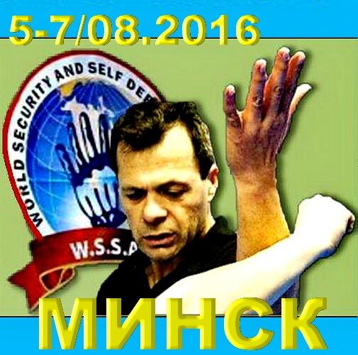 2016 Семинар Г.Михаэли Лого