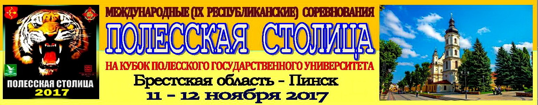Полесская столица-2017   Академия КАРАТЭ b7bfc159407