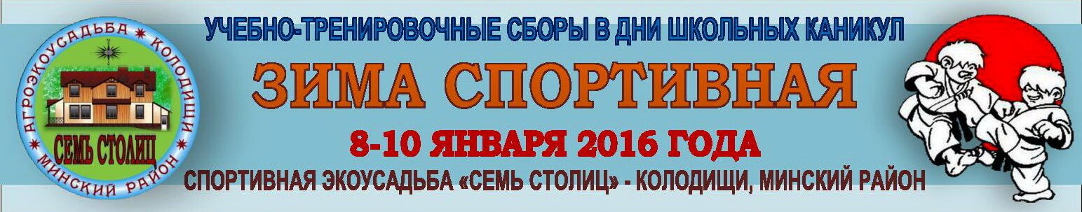 Зима спортивная-2016 Баннер